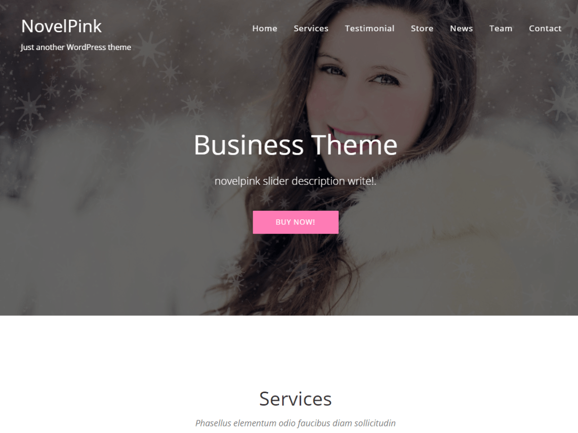 NovelPink One Page Theme