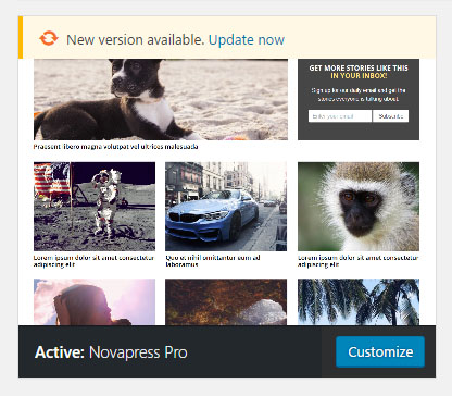 novapress-pro-update