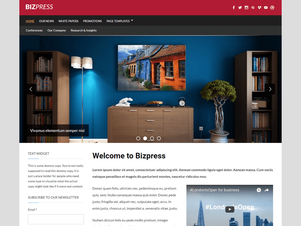 bizpress theme