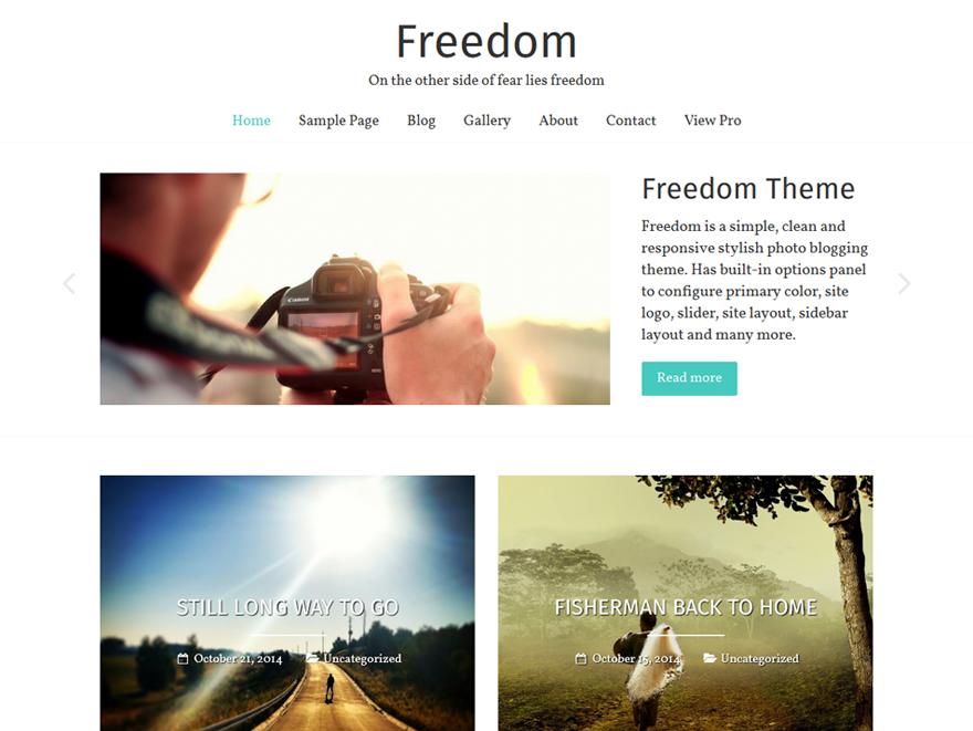 Freedom Theme