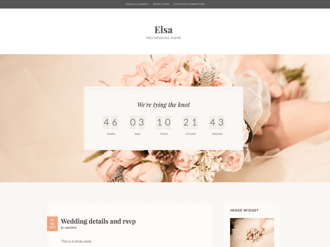 10 Free Event Planning WordPress Themes 2017 | Themely