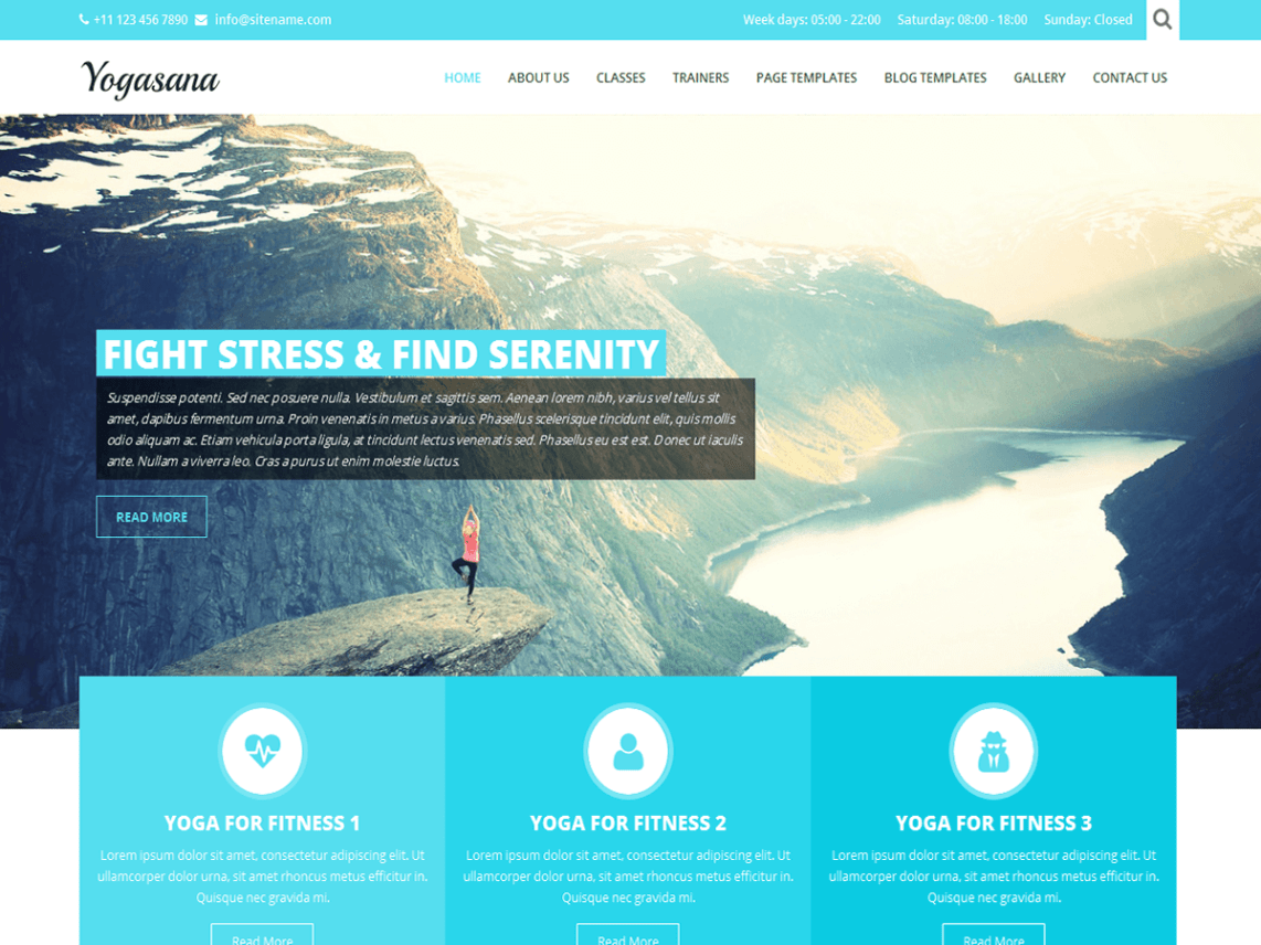 10 Free Health & Fitness WordPress Themes 2017 | Themely