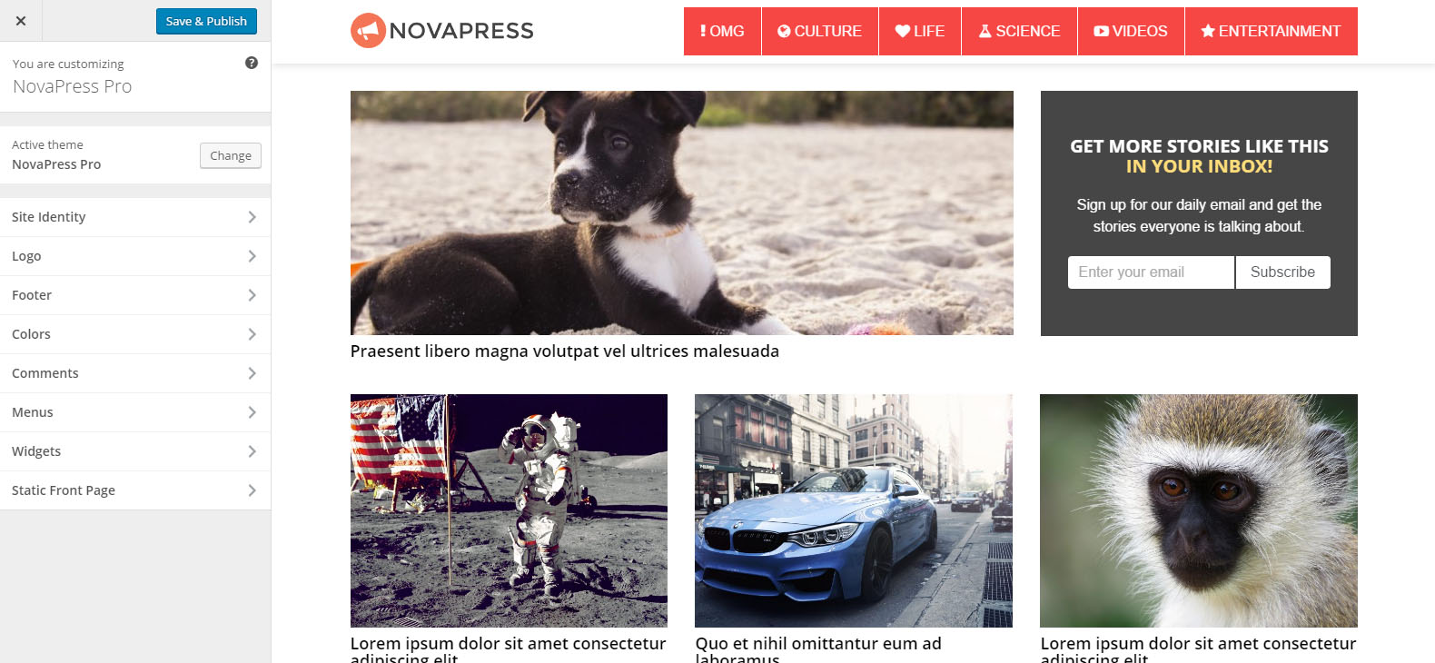 novapress-theme-screenshots2